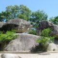 Hòn Trống Mái- Sầm Sơn