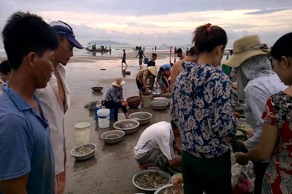 Chợ hải sản trên bãi biển Hải Hoà