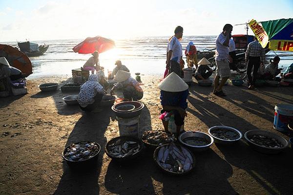 Chợ hải sản trên bờ biển Hải Hoà